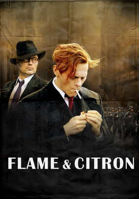 Netflix box art for Flame and Citron
