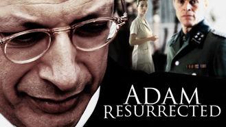 Netflix box art for Adam Resurrected